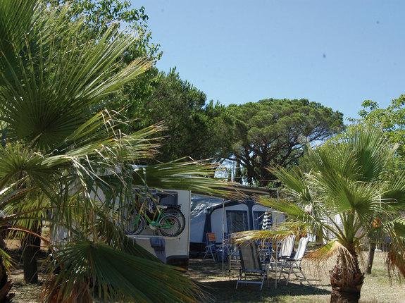 camping**